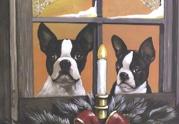 Boston Terrier Christmas Cards