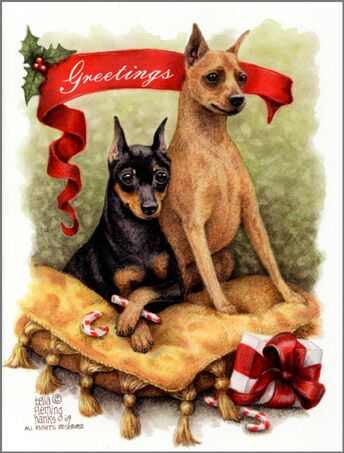 "Miniature Pinscher Christmas Cards ""Greetings"""