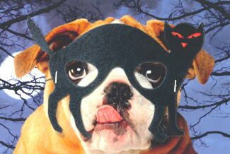 Bulldog mask halloween card
