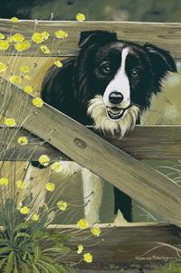 Border Collie Linen Tea Towel