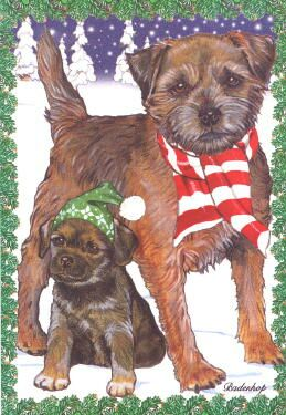 Border Terrier Christmas Cards