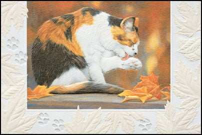 calico cat sympathy card