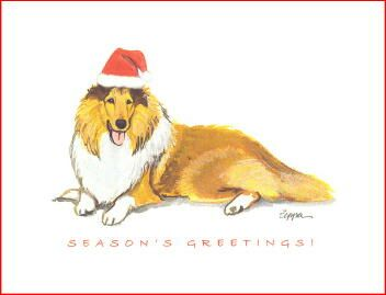 Collie Christmas Cards