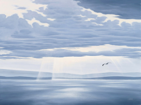 The Veil 2 with Albatross, Tasmania. Oil on canvas. Looking from Bruny Island Lighthouse, Tasmania.