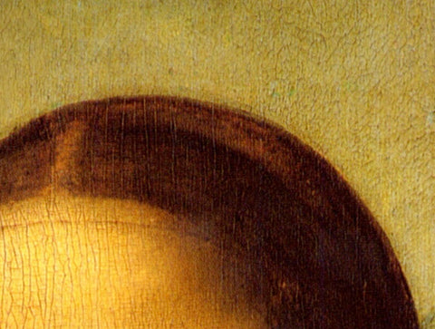 close up of groove in real mona lisa head