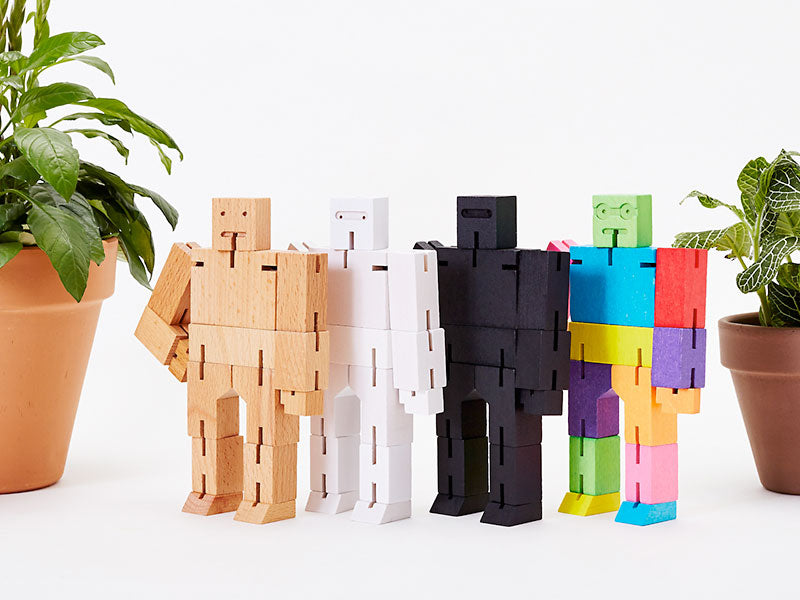 Get the Cubebot Small Basic Bundle