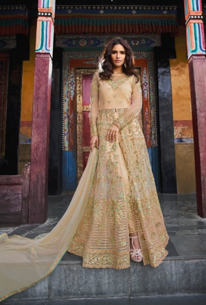 Cream Designer Net Anarkali Suit - Desi Royale