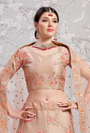 Light Brown Silk Lehenga Choli