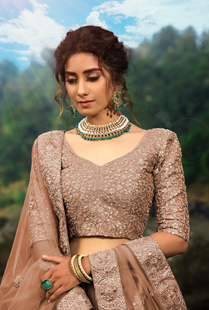 Brown Lehenga Choli