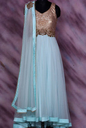 Blue Designer Party Wear Dress - Desi Royale
