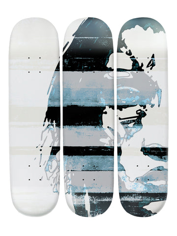Don Carlo 'Skateboard x 3 Combo Wall Art'