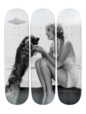 Georgina Fallows III 'Skateboard x 3 Combo Wall Art'