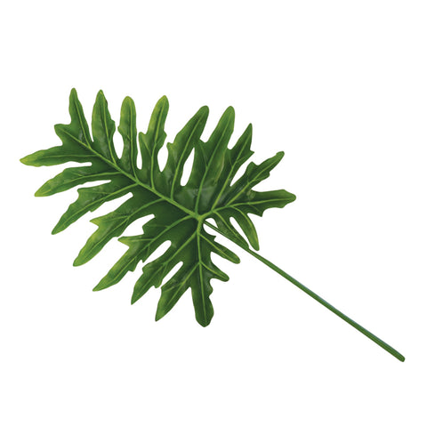 Philodendron leaf 90cm