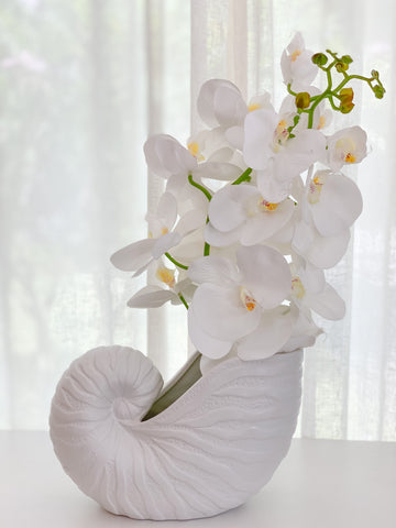 ML Sea Shell Planter
