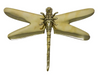 Searles Decor Dragonfly 19cm
