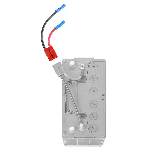 6 gauge connection for outboards and heavy duty applications - (RCE12VB6)