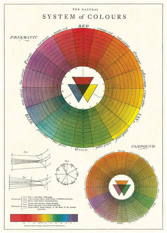 Cavallini - Colour Wheel - Wrapping Paper / Poster