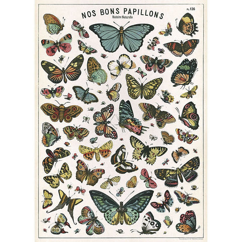 Cavallini - Butterflies - Wrapping Paper / Poster