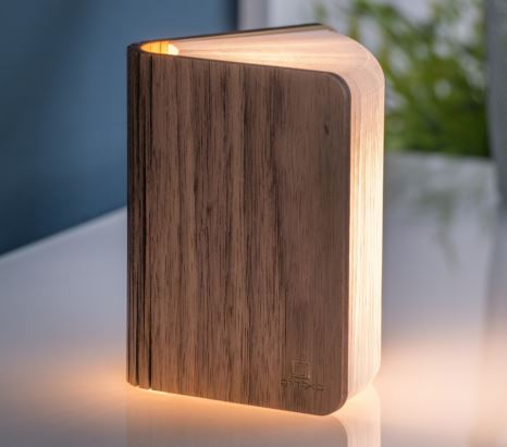 Gingko Electronics Natural Wood Smart Book Light Mini