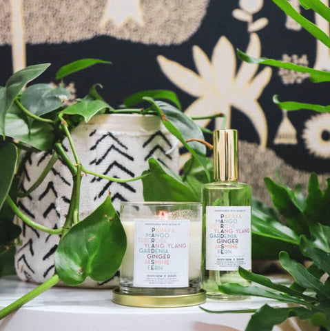 Dolkii x Jules and Gem Home Fragrances - Paradise
