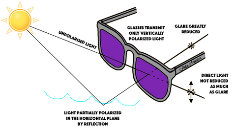 1d4a129cf95 How Do Polarized Glasses Work – McAllister Technical Services