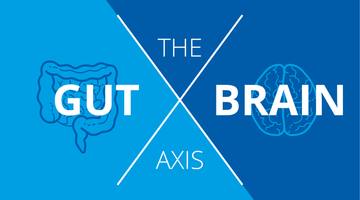 The Gut-Brain Axis: How Your Gut Dictates Your Mental Health