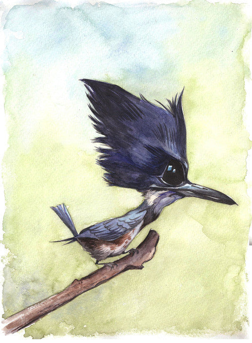"""Belted Kingfisher"" Marc Anderson, artist"