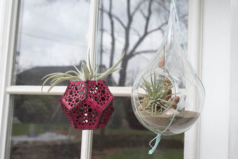 Hand and Hide Leather Airplant Holder