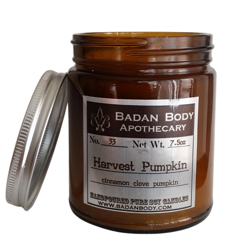 Harvest Pumpkin Jar CocoySoy Candle 9 oz
