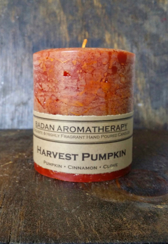 Harvest Pumpkin: Cinnamon Clove & Pumpkin Scented Pillar Candle, 3x3.5 Inches Tall