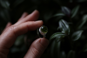 Forest moss ring