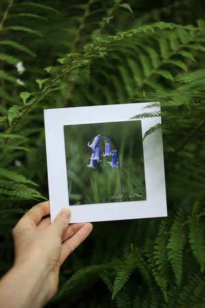 Bluebell wildflower card ~ Include a handwritten card with your order