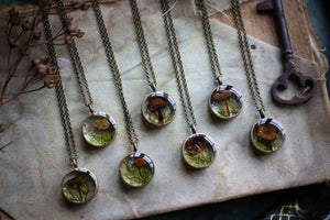 Mushroom and forest moss terrarium locket