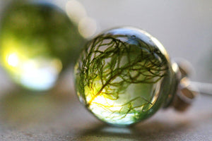 Forest moss earrings
