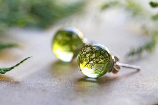 Forest moss earrings - real plant jewellery