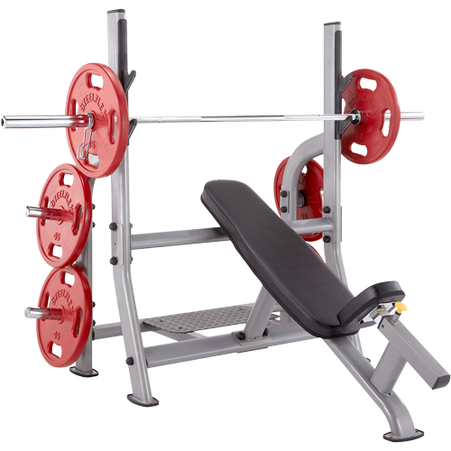 Steelflex Neo Olympic Incline Bench NOIB