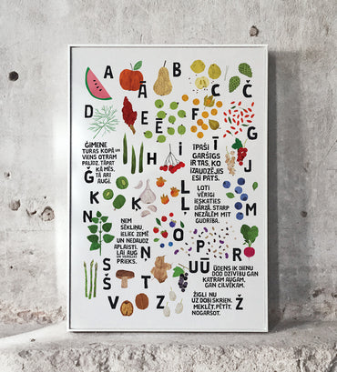 [NEW] Graphic Print — ĀBECE Alphabet