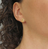 paw print earrings 14k gold