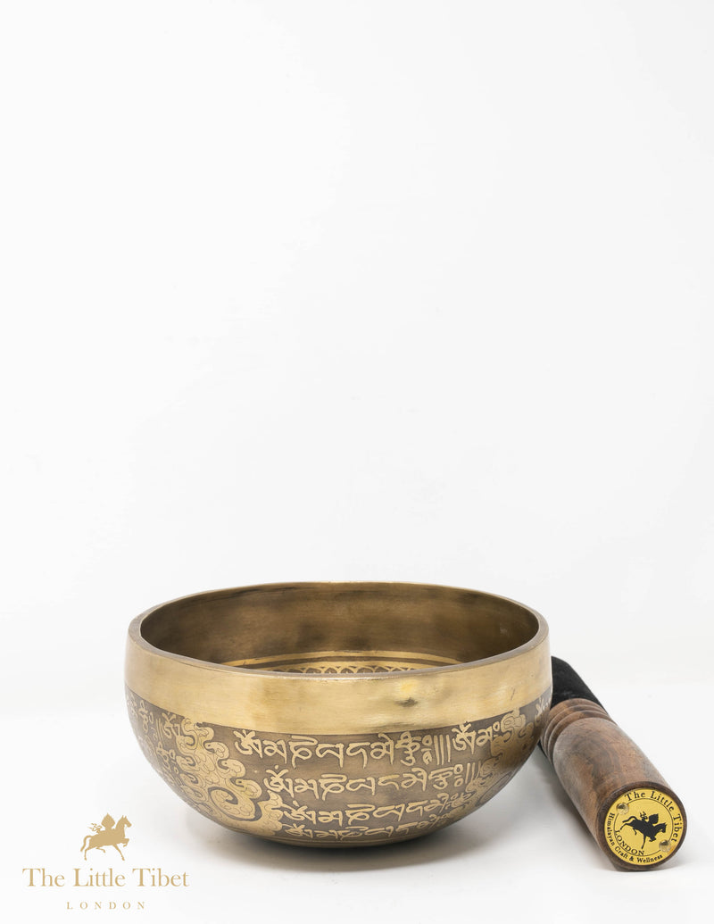 Om Mantra Tibetan Hand hammered Singing Bowl, Himalyan Bowl - T09