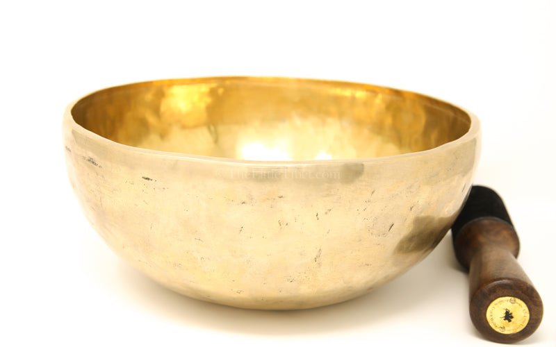 gold Plain Hand Hammered Tibetan Singing Bowl with stick close up
