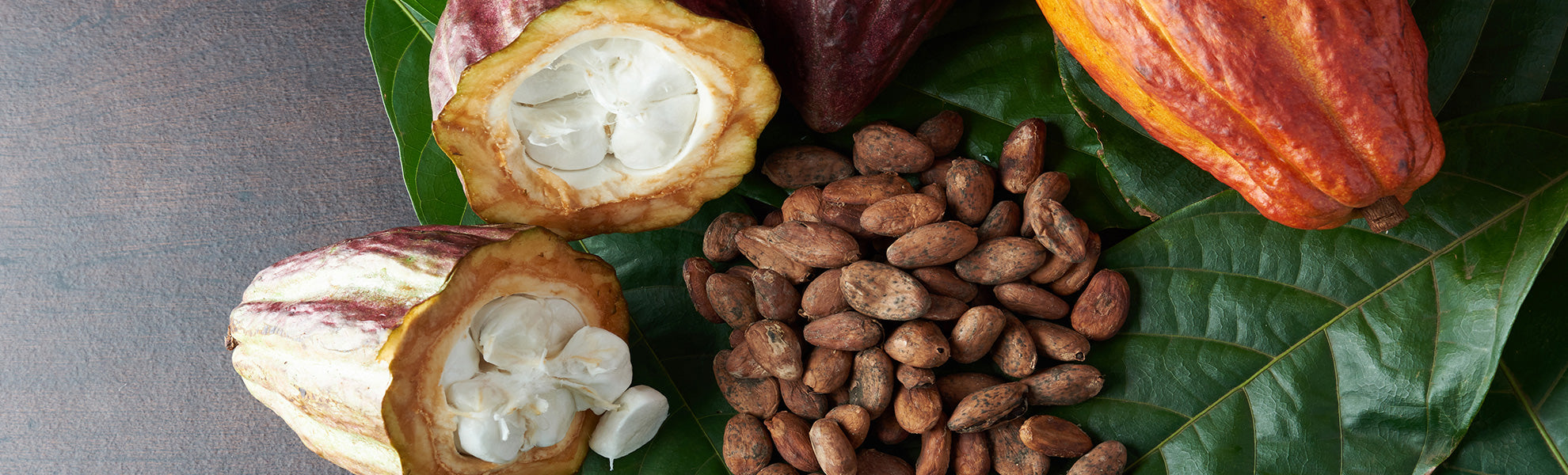 cacao raw benefici