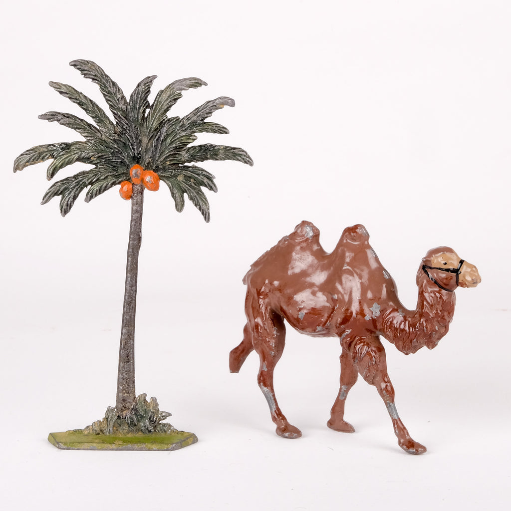 Palm Tree and Camel