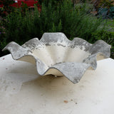 Beautiful Willy Guhl Flower Planter