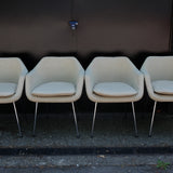 Stylish Robin Day Chairs