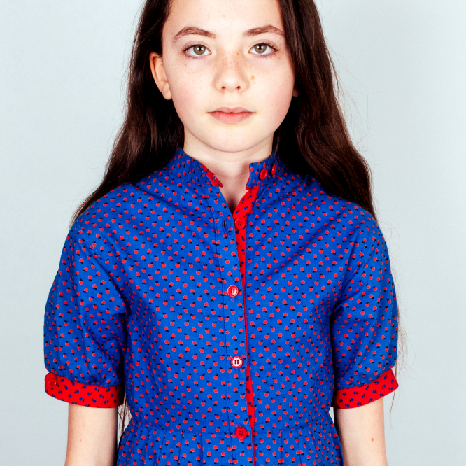Blue & Red Apple Print Dress