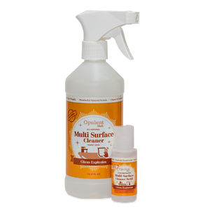 Multisurface Cleaner Starter Kit - Citrus