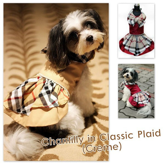 Chantily in Classic Plaid Dress (Creme)