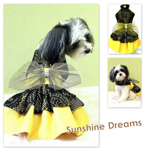 Sunshine Dreams Dress