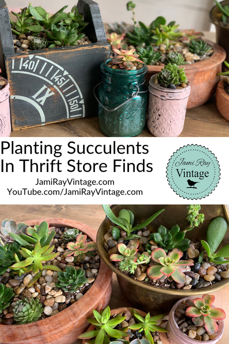Planting Succulents In Thrift Store Finds
