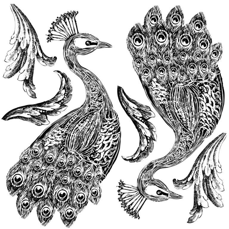 Pavo | Decor Stamp | IOD